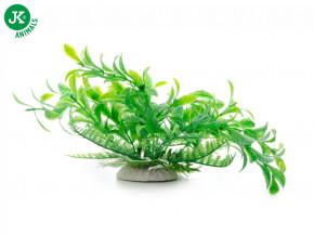 JK ANIMALS Akvarijná rastlinka Ludwigia zelená, 14-17 cm | © copyright jk animals, všetky práva vyhradené