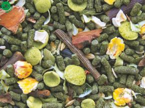 Tropifit - Degu - osmák | © copyright jk animals, všetky práva vyhradené