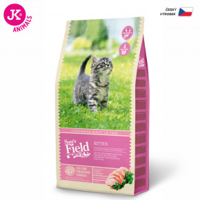 Sam 's Field Cat Kitten   © copyright jk animals, všetky práva vyhradené