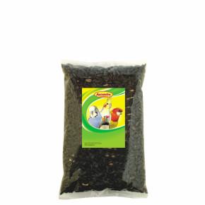 Avicentra Slnečnica čierna 1kg