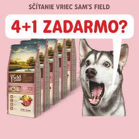 AKCIA: SF 4+1 pre psov